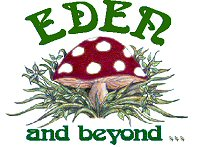Eden and Beyond landscape gardeners